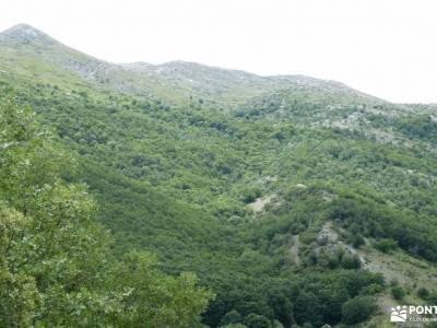 Montaña Palentina.Fuentes Carrionas; glosario de senderismo rutas senderismo dehesa boyal san sebast